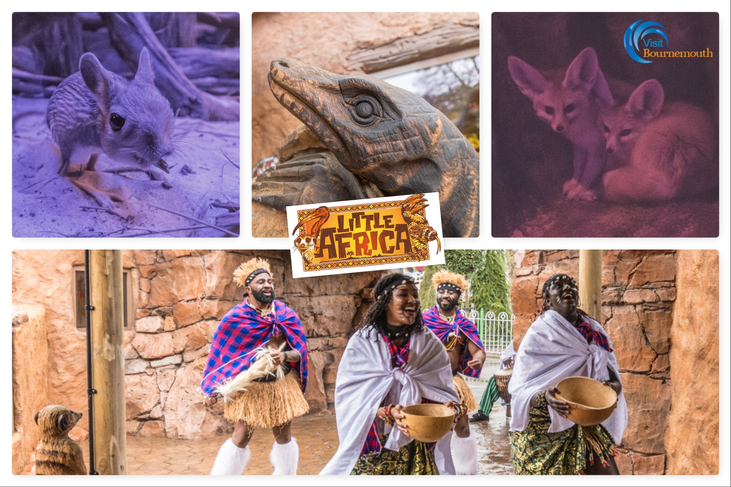 Discover Little Africa at Paultons Park - 40 new photos