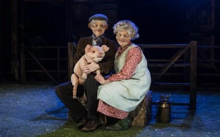 Babe the Sheep-Pig
