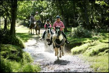 Burley Villa School of Riding