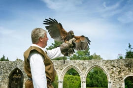 Meet the Nature Detective at Beaulieu this Easter