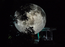 Will you howl at DORSET MOON?