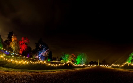 Christmas Lights at Kingston Lacy
