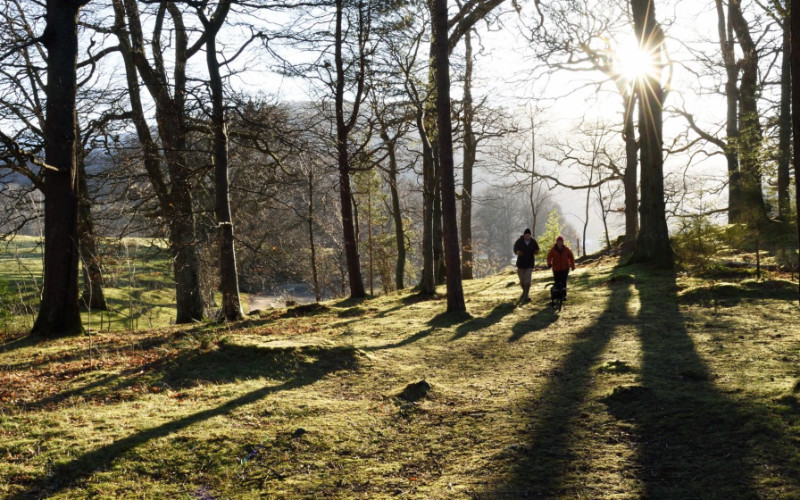 Kingston Lacy Out of Hours Guided Walks